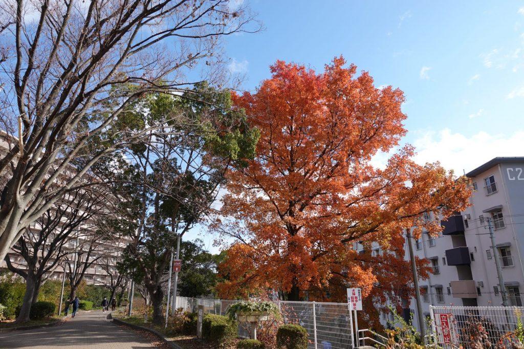 千里東町公園